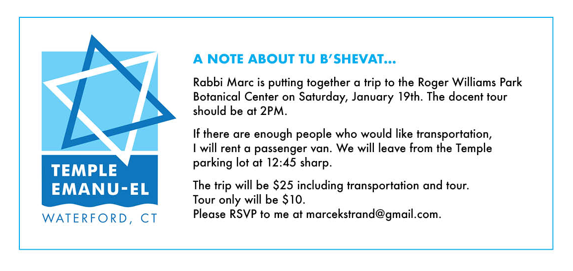Tu b' Shevat Trip – All Welcome